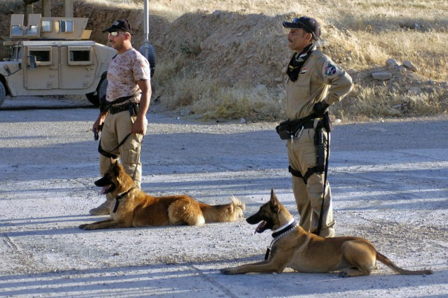 Iraqi Police dog handlers work with their dogs on basic obedience techniques during a working dog training course near Mosul, Iraq. The course is designed to fine tune obedience and explosive-detection skills of the Iraqi working dogs and their handlers.
