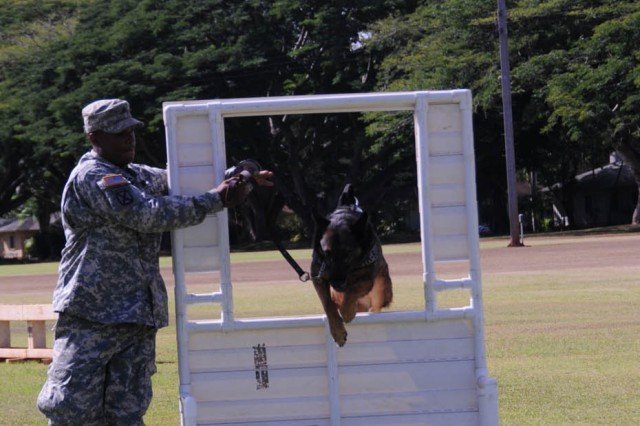 Sgt. Brian Biggs, 13th Military Police Detachment, 728th Military Police Battalion, Schofield Barracks, Hawaii, guides his working dog, Mandy, through the obstacle course during the 2009 Hawaiian Islands Working Dog Competition.