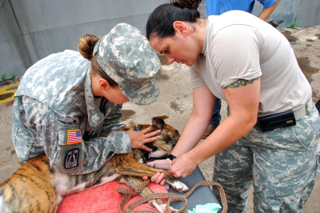 APS Swift Army veterinary team in Liberia