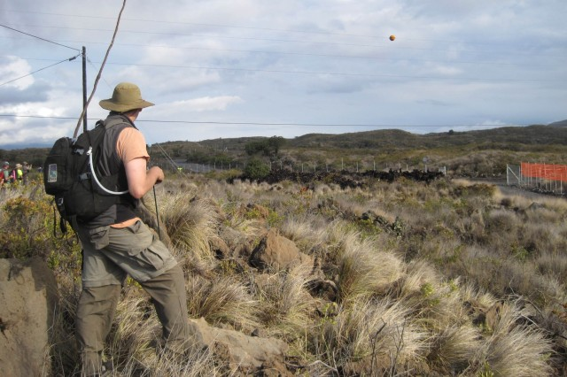 POHAKULOA TRAINING AREA, Hawaii - Volunteer Jack Bierman looks on as 1,700 wild sheep and goats finally decide to stampede their way out of Army environmental protective areas containing endangered native Hawaiian plants.