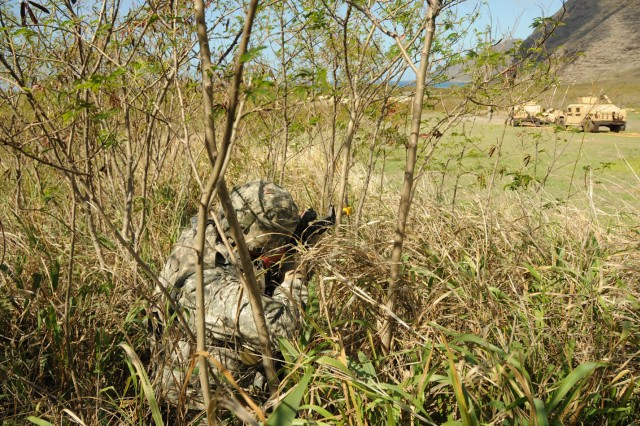 Sgt. Peter Avila, A Company, 225th Brigade Support Battalion, ambushes humvees during a field training exercise Nov. 18 at Makua Valley training area on the island of O'ahu.