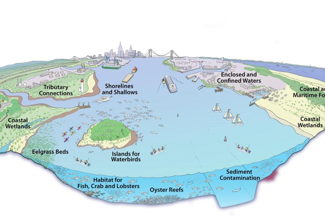 """The Comprehensive Restoration Plan includes 11 priority target ecosystems for restoration."""""""