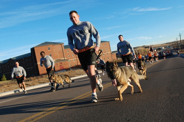 FORT CARSON, Colo. - Spc. Michael Mumby, canine handler, 148th Military Police Detachment, 759th MP Company, and his partner, a German Shepherd named Sgt. Chat who works as a patrol narcotics detection dog, kept pace with the Mountain Post Team during a four-mile installation run to honor veterans Nov. 5. U.S. Army tradition dictates that the dog is always one rank higher than the handler of a canine team.
