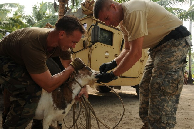 100109-N-1008D-032 SULU, Philippines (Jan. 9, 2010) A U.S. Special Forces Soldier and Veterinarian Lt. Col. Stephen Goldsmith, both assigned to Joint Special Operations Task Force-Philippines, give treatment to a goat at a Veterinarian Civic Action Program. JSOTF-P partnered with the Armed Forces of the Philippines Marine Battalion Landing Team-5 to provide vet services to residents living near the AFP Marine camp headquarters. A total of 35 animals were given dewormers and vitamin treatments. (U.S. Navy photo by Lt.j.g. Theresa Donnelly/Released)