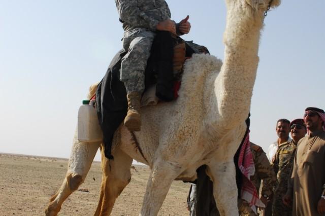 Iraqi Bedouins seek role in secure future