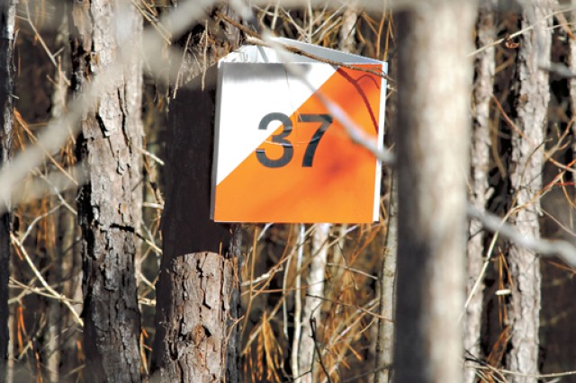 """Soldiers searched for numbers on white and orange markers affixed to trees or on the ground to indicate they'd reached the assigned point.  Some points, such as this one, were located in the center of marshes."""""""