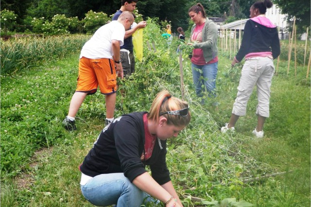 Youth Community Service Projects Valued at $11,984