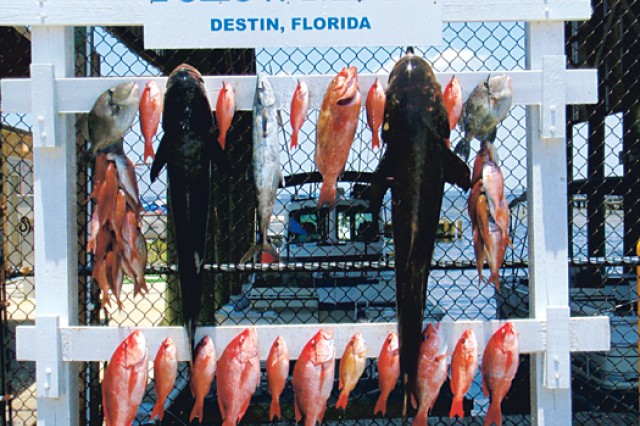 Destin is considered to be the world's luckiest fishing village. The Destin Army Recreation Area has charter boats available for dolphin tours, deep-sea fishing excursions and more.