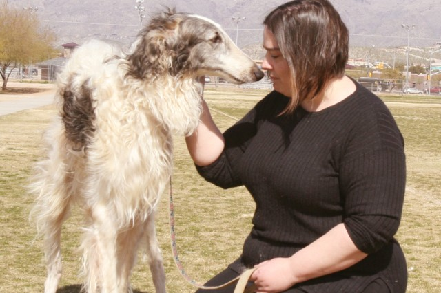 Alicia Miller, cofounder of Operation Wolfhound, tries to calm Corona, a Borzoi Russian Wolfhound, who will be used as a service dog for Lucien Mason, a Vietnam War veteran who has Post-Traumatic Stress Disorder.