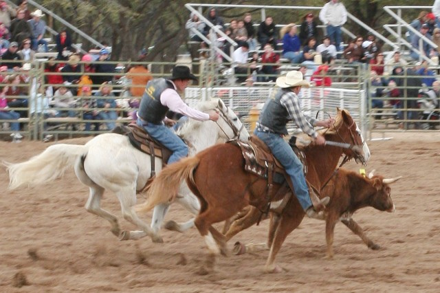 """College Rodeo is a stepping stone to professional competition. On Saturday, cowboys and cowgirls showed off their skills at Wren Arena. Several competitors have entered the CNFR arena and Professional Rodeo Cowboys Association's National Finals Rodeo arena in the same year."""""""