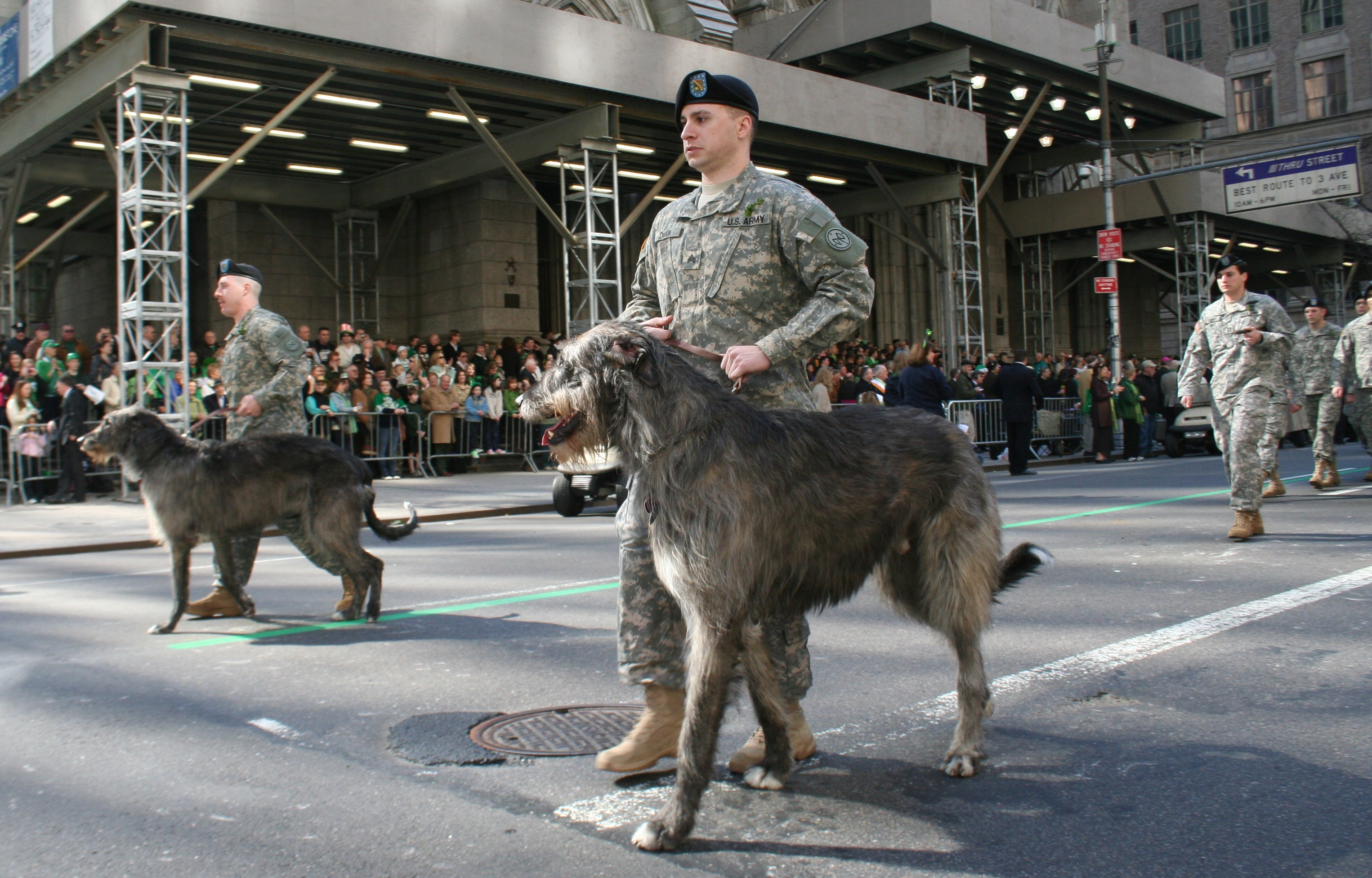 Fighting 69th Welcomes Irish Army Battalion For St Patricks