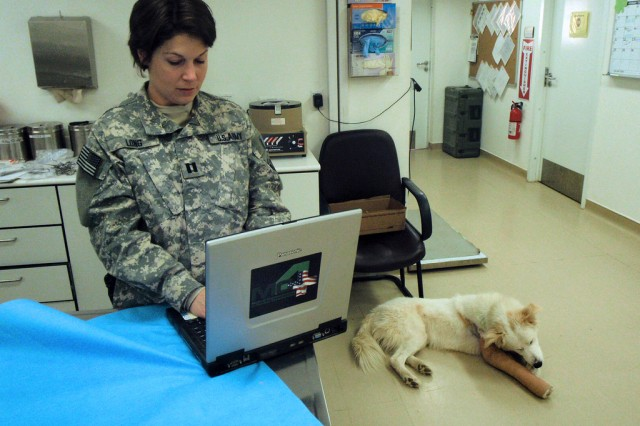 Capt. Erin Long, officer in charge of the 51st Medical Detachment (Veterinary Medicine), electronically documents the care administered in the veterinary clinic at Balad Airfield, Iraq, to a military working dog with a fractured leg. It is the same system-Medical Communications for Combat Casualty Care (MC4)-used to document the care of deployed Service members.