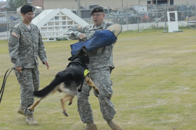 """""""Bak"""" goes after SGT Brian Bender as his handler, SGT Amy Meyer, keeps an eye on the canine during a demonstration at Tuesday's grand opening."""