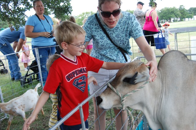 Safety Day - Petting zoo