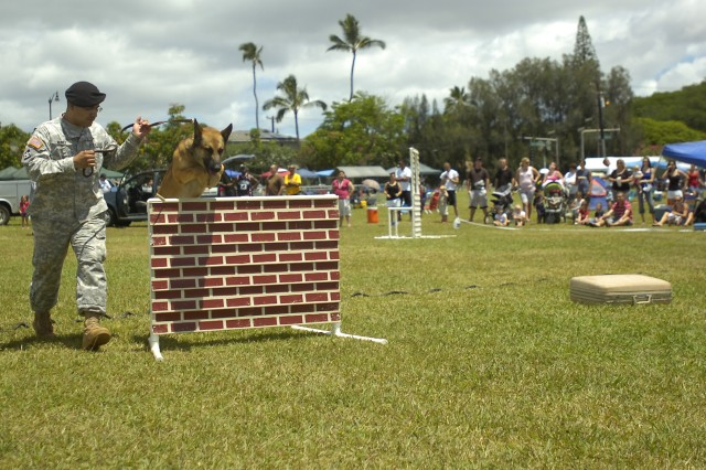 Sergeant George Nunez, a military policeman with the 13th Military Police Detachment, leads his military working dog over a hurdle as part of the military working dog demonstration on Sills Field during the 39th Annual 4th of July Spectacular at Schofield Barracks, Hawaii, July 4. The public event invited families to the many games, prize giveaways and performances in celebration of Independence Day. (U.S. Army photo by Spc. Jesus J. Aranda, 25th Infantry Division Public Affairs Office)