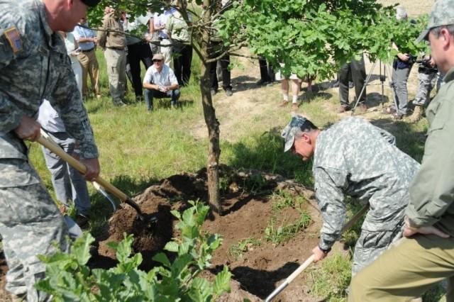 GTA Tree Planting
