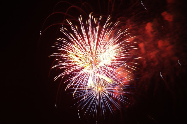 Fireworks explode in the sky over Hilton Field Saturday during Fort Jackson's Torchlight Tattoo. The event attracted thousands from around the Midlands.
