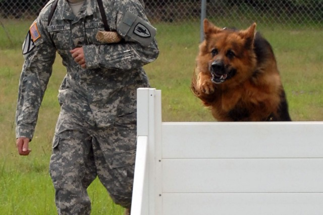 Military working dogs: Mission multipliers at Fort Rucker, downrange