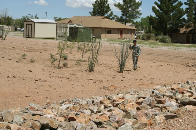 A Soldier examines one of Fort Huachuca's retention basins, located along Christy Street, Tuesday afternoon. The basins are used as a best management practice to manage stormwater runoff to prevent flooding and downstream erosion.