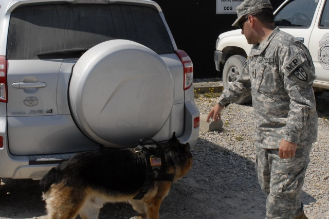 Staff Sgt. Frederick Ferrigno, noncommissioned officer-in-charge, Camp Bondsteel Military Working Dogs, a native of Long Branch N. J., and his military working dog Hugo search a vehicle for explosives during a demonstration July 23, at Camp Bondsteel. The demonstration was to show the new unit commanders of KFOR 13 what the capabilities of the MWDs are. (U.S. Army photo by Pfc. Brian J. Holloran, 130th PAD)
