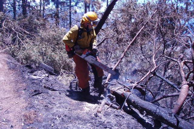 Aaron Lowe, wildland firefighter, State of Hawaii Division of Forestry and Wildlife, cuts smoldering trees to prevent the spread of a wildfire that started at Makua Military Reservation, July 24.