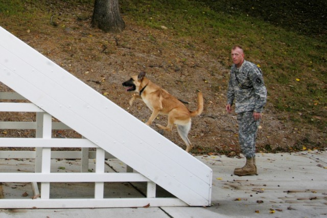 MDW pilot program to debut search, rescue dogs at Capital Shield