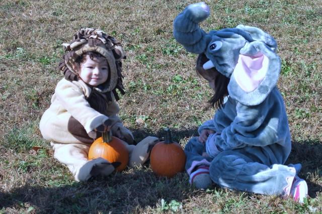 EFMP Pumpkin Patch provides Family entertainment