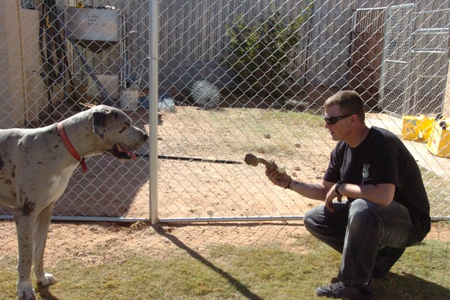 "EL PASO, Texas (October 23, 2010) Spc. Chris Cooper, truck driver with D Company, 123rd Brigade Support Battalion, tries to lure a spotted Great Dane, ""Pickles,"" with a rope inside one of the newly constructed fences he and his team built at the Great Dane Rescue of El Paso, Oct. 23."