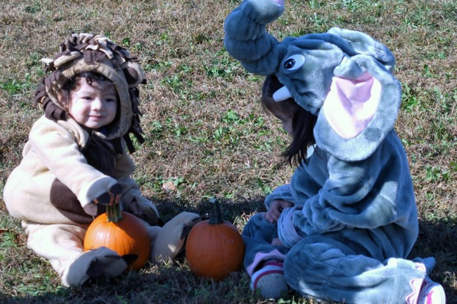 Community participates in Halloween fun this weekend