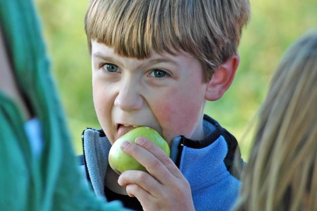 Bailey Hamrick, age 6, enjoys an apple at the orchard.