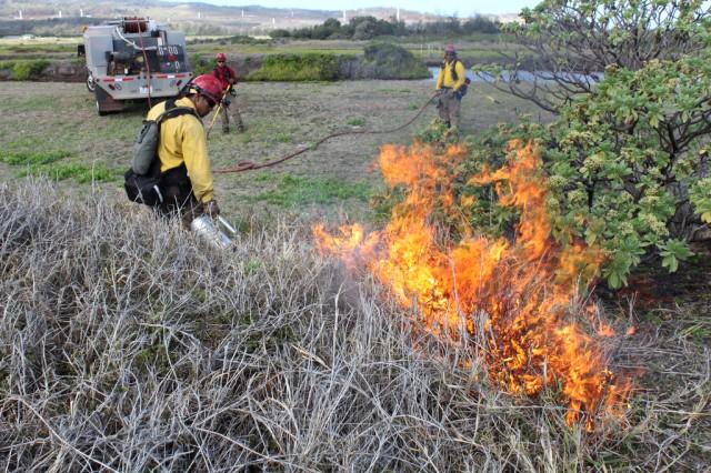 Army's wildland firefighters fill niche onAca,!E+island