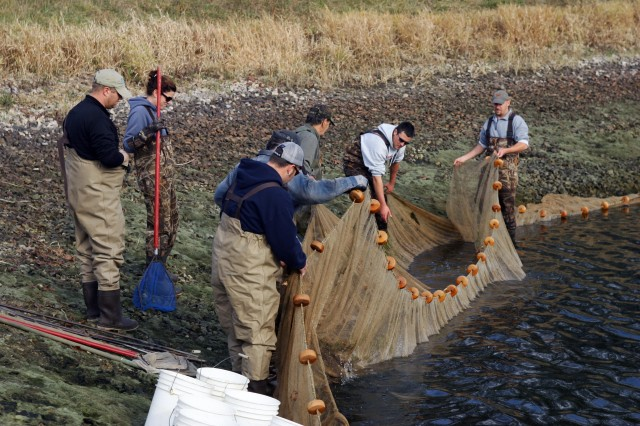 Wisconsin Department of Natural Resources and Fort McCoy Fisheries Program personnel collect fish from the Whitetail Ridge Ski Area holding pond for transport to Lake Tomah.