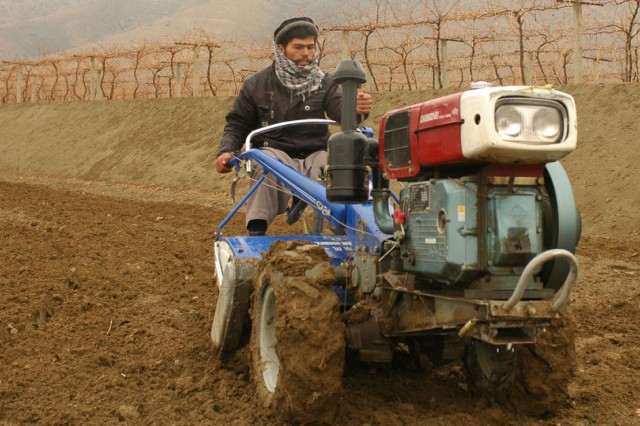 Afghan farmer using two-wheeled tractor