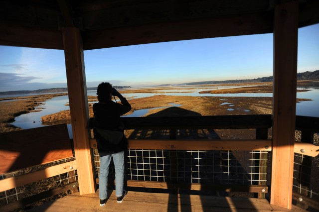 A visitor to the Nisqually National Wildlife Refuge checks out the panoramic view from the Puget Sound Viewing Platform at the end of the new 1.05 mile long boardwalk atop the Nisqually River estuary.
