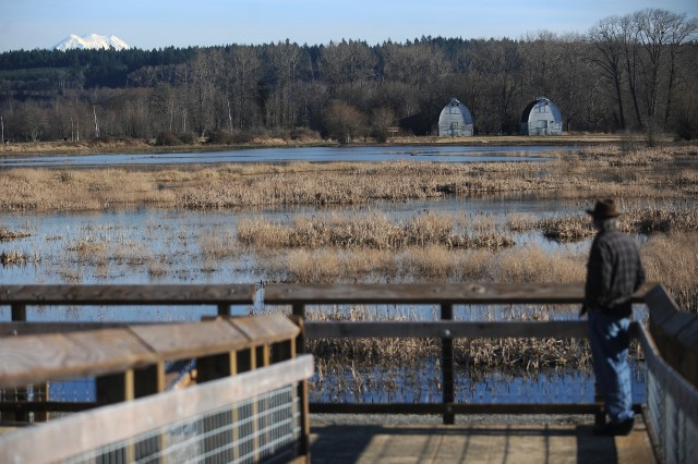 A visitor looks toward the Twin Barns and Mount Rainier from the Nisqually Estuary Boardwalk Trail Observation Tower.