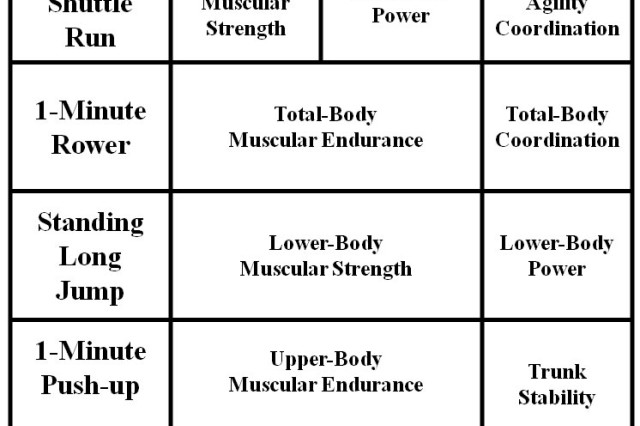 This table describes the components assessed (strength, endurance and mobility) by each exercise event.