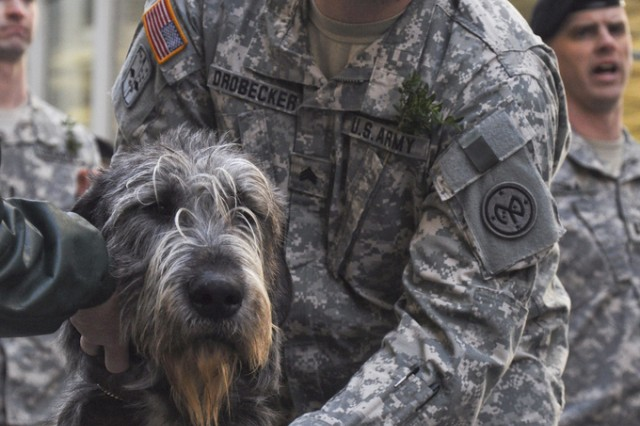 New York Army National Guard Sgt. Adam Drobecker with one of the 69th Infantry's Wolfhound Mascots.  The battalion, famous for its role in the Civil War as part of the Irish Brigade, has led the New York City St. Patrick's Day parade for the past 160 years.
