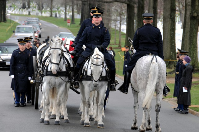 The caisson pulled by white horses patiently waits as the crew members are prepared to be carried to the gravesite.