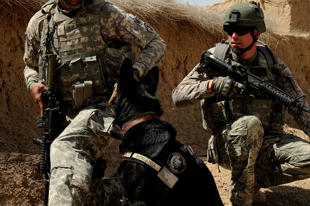 ZABUL PROVINCE, Afghanistan--U.S. Navy Petty Officer 2nd Class Brian Teart and U.S. Air Force Staff Sgt. Michael Stevens, military working dog handlers for Combined Team Zabul, provide security along with Blacky, during a route clearance mission in Zabul, Afghanistan, March 25, 2011. Both MWD handlers are deployed to Forward Operating Base Lagman, Afghanistan. (U.S. Air Force photo/Staff Sgt. Stephen D. Schester, 16th Mobile Public Affairs Detachment)