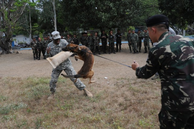 CLARK FIELD, Philippines - Sgt. 1st Class Jimmie Smith (left) of the 928th Military Police, Connecticut Army National Guard, participates in an attack drill with Hector, a military working dog, and Sgt. Darwin Japlos of the Philippine Air Force, during an exchange of K-9 techniques between U.S. Soldiers and Airmen and members of the Armed Forces of the Philippines April 7 at Clark Field, Philippines, during exercise Balikatan 2011.