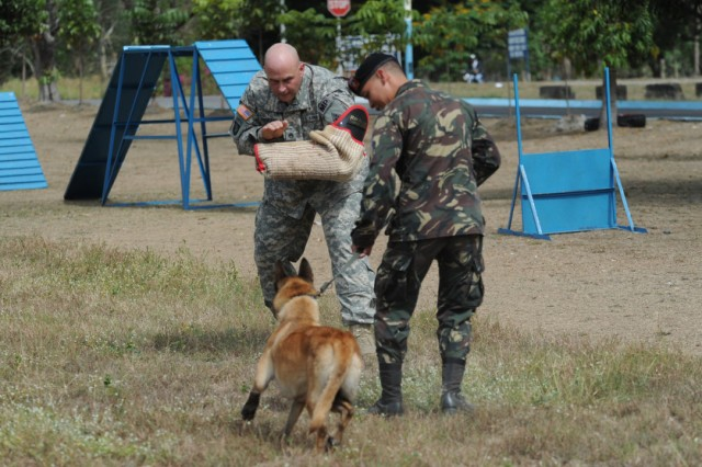 CLARK FIELD, Philippines - Staff Sgt. Jerry Fountaine, II, of the 928th Military Police, Connecticut Army National Guard, works on an aggression drill with Philippine Air Force Airman 1st Class Emanuelle Leonardo and his military working dog as U.S. Soldiers and Airmen exchanged K-9 training techniques with their Philippine military counterparts April 7 at Clark Field, Philippines, during exercise Balikatan 2011.