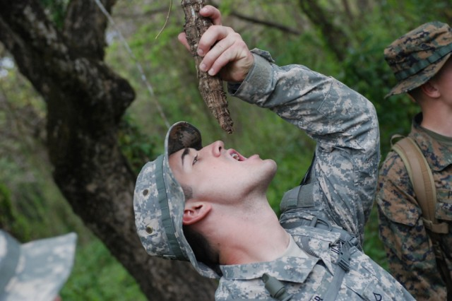 "Pfc. Patrick W. Muir, Headquarters and Headquarters Troop, 4th Squadron, 7th Cavalry Regiment, 2nd Infantry Division, based at Camp Hovey, South Korea, drinks water from a tree vine during a four-mile hike as part of jungle survival training April 6, at Fort Magsaysay, Philippines. U.S. Marines and Soldiers trained on survival skills, including catching and cooking wildlife, with their Filipino counterparts as part of Balikatan 2011. Balikatan, which means ""shoulder-to-shoulder"" in Tagalog, is an annual joint exercise between the armed forces of the U.S. and the Republic of the Philippines."