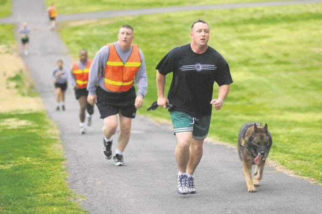 Military Police officers and working dogs were among the more than 100 participants running in the Army Community Service Sexual Awareness Run Tuesday at the Fort Belvoir Golf Club.