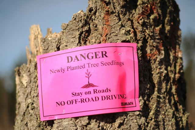 Pink signs mark the boundaries of a newly reforested area on Joint Base Lewis-McChord, Wash., to prevent the small trees from being trampled.