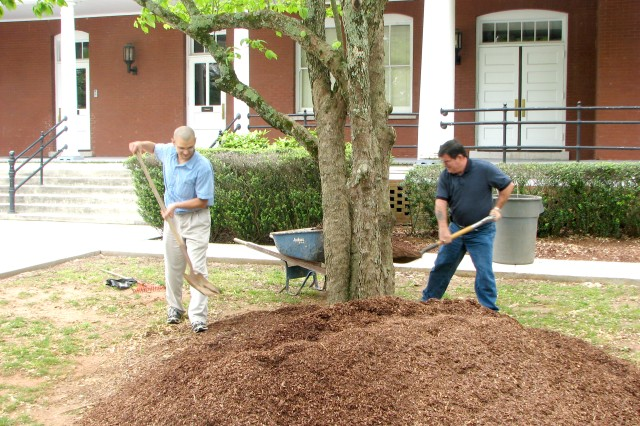 Area beautification: we dig it
