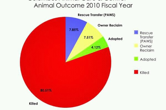 Percentage of rescued, adopted, reclaimed and euthanized animals for 2010.