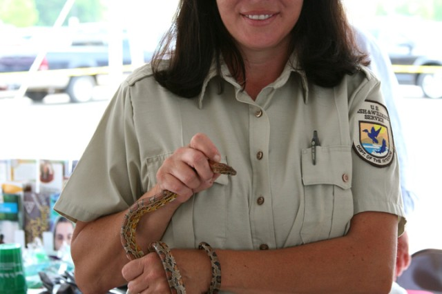 Daphne Moland, ranger, Wheeler Wildlife Refuge, displays a corn snake during Safety Day, May 11. The event was co-hosted by the U.S. Army Space and Missile Defense Command/Army Forces Strategic Command.
