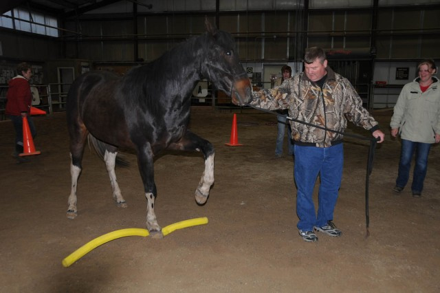 "Gypsy stomps on a ""noodle"" instead of stepping over it while being led by Staff Sgt. Earl Chism during Equine Facilitated Learning at the National Ability Center in Park City, Utah."