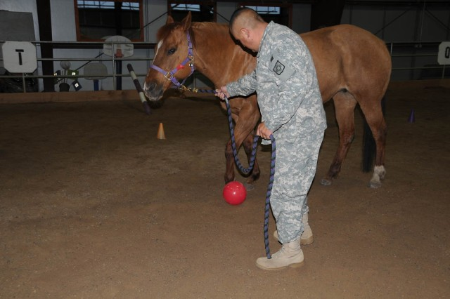Staff Sgt. Miguel Padilla leads Dolly to kick a ball as part of an obstacle course he created in Equine Facilitated Learning at the National Ability Center in Park City, Utah.