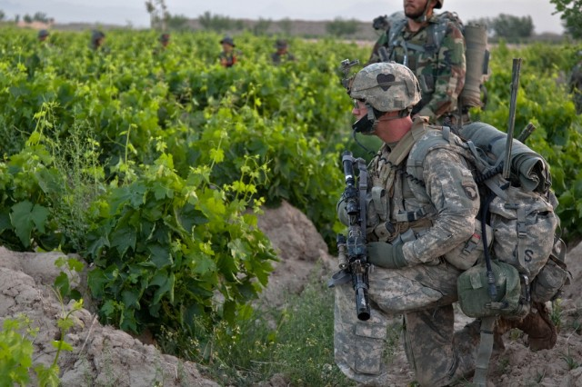 Spc. Joseph Wilhelm (right), with Headquarters and Headquarters Company, 2nd Battalion, 502nd Infantry Regiment, 101st Airborne Division, patrols a grape vineyard with members of the Afghan National Army during Operation Mountain Cougar, in Char Shaka, Kandahar province, Afghanistan, on April 28, 2011.